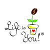 Life is you