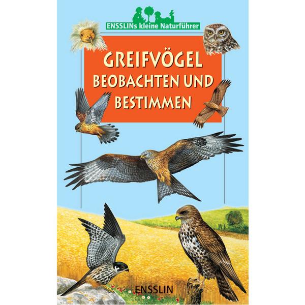 Greifvögel beobachten und bestimmen