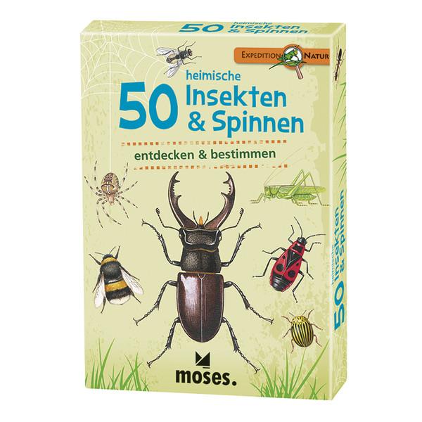50 heimische Insekten & Spinnen