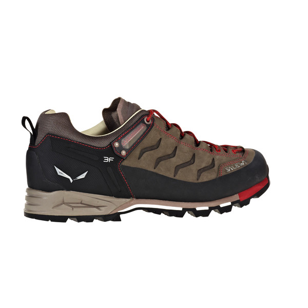 Mountain Trainer L