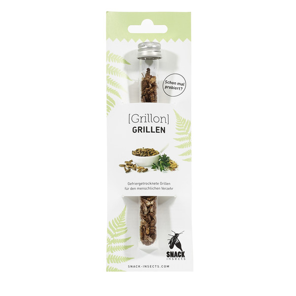 Snack-Insects Grillon