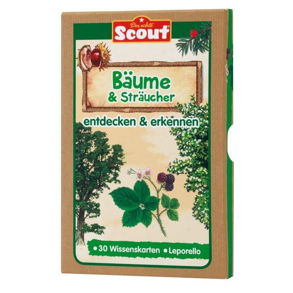 Scout Lernkarten-Box - Bäume & Sträucher - Kinderbuch
