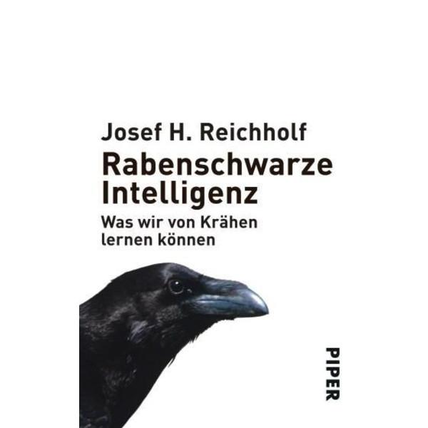 Rabenschwarze Intelligenz - Sachbuch