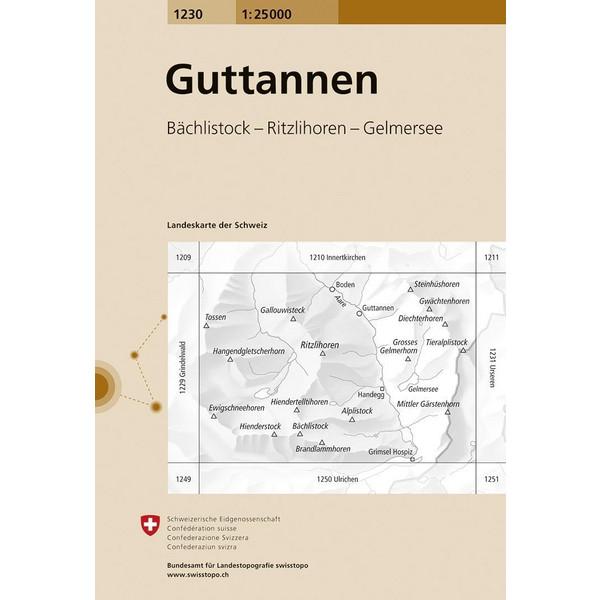 Swisstopo 1 : 25 000 Guttannen - Wanderkarte