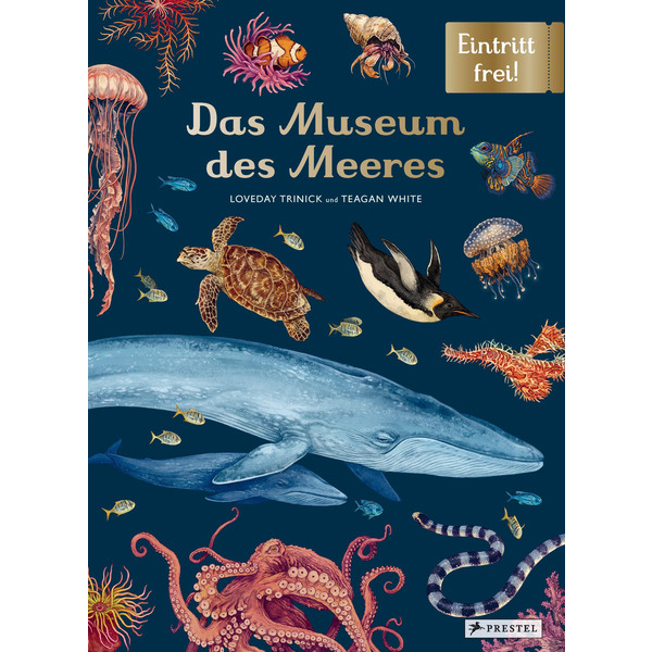 DAS MUSEUM DES MEERES - Kinderbuch