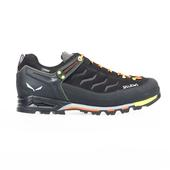 Mountain Trainer GTX