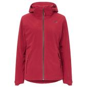 The North Face Insulated Apex Flex gtx 2.0 Jacket Frauen - Winterjacke