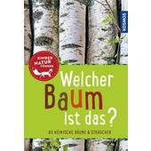 Welcher Baum ist das? Kindernaturführer  - Kinderbuch