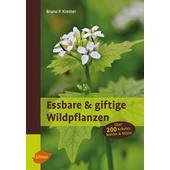 Essbare und giftige Wildpflanzen  -