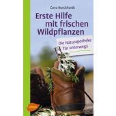ERSTE HILFE MIT FRISCHEN WILDPFLANZEN  -