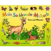 Mein Sachkunde-Malbuch Tiere und Pflanzen (grün)  - Kinderbuch