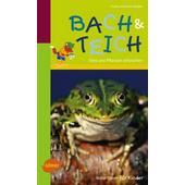 Naturführer für Kinder: Bach und Teich  - Kinderbuch