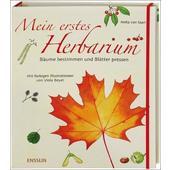 Mein erstes Herbarium - Bäume bestimmen und Blätter pressen Kinder - Kinderbuch