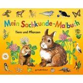 Mein Sachkunde-Malbuch Tiere und Pflanzen (orange)  - Kinderbuch