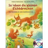 So leben die kleinen Eichhörnchen  - Kinderbuch