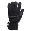 Windstopper Glove 1