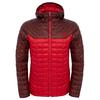 TNF red/sequoia red