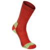 Alpacasocks ALPACASOCKS 3-PACK BEAR Unisex - Wintersocken - BLOOD RED