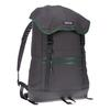 Patagonia ARBOR CLASSIC PACK 25L Unisex - Tagesrucksack - FORGE GREY