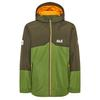 Jack Wolfskin ICELAND 3IN1 JKT Kinder - Doppeljacke - ANTIQUE GREEN