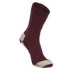 Alpacasocks ALPACASOCKS 3-PACK BEAR Unisex - Wintersocken - BURGUNDY/NATURAL