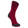 Alpacasocks ALPACASOCKS 3-PACK BEAR Unisex - Wintersocken - DEEP RED/PINE GREEN