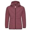 FRILUFTS STIERVA HOODED FLEECE JACKET Kinder - Fleecejacke - FIG