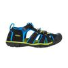 Keen SEACAMP II CNX Y Kinder - Outdoor Sandalen - BLACK/BRILLIANT BLUE